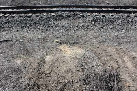 Tire tracks leading to the out of alignment rails at the derailment site of the Southwest Chief.